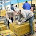 Tuyển 27 nam làm công việc đóng gói công nghiệp tại Hyogo tháng 07/2018