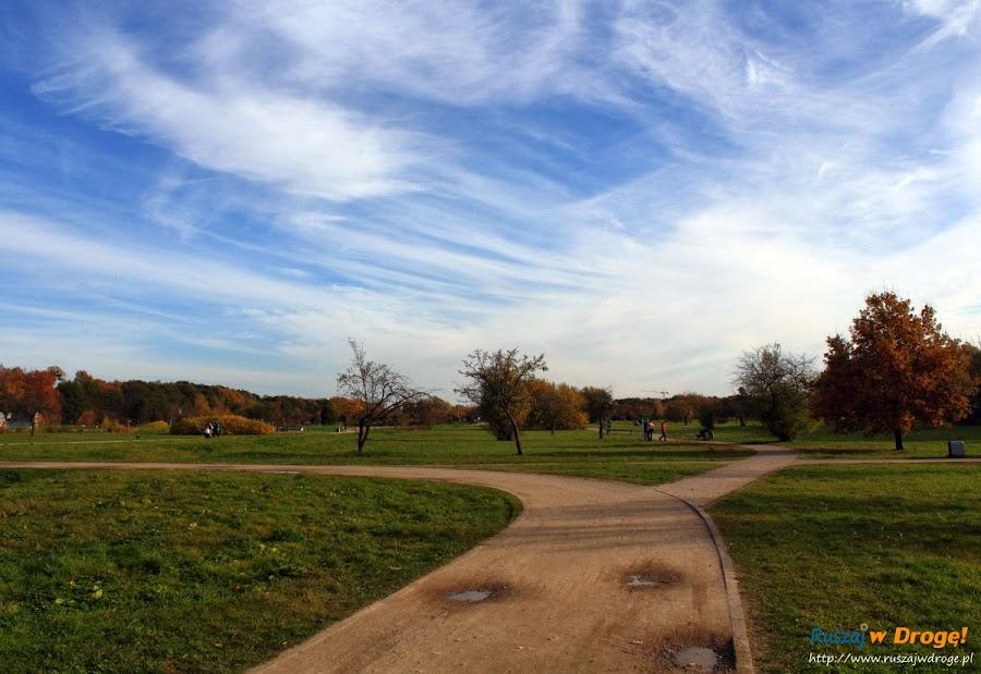 Park Reagana w Gdańsku - świetne miejsce na spacer