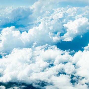Paola Barahona