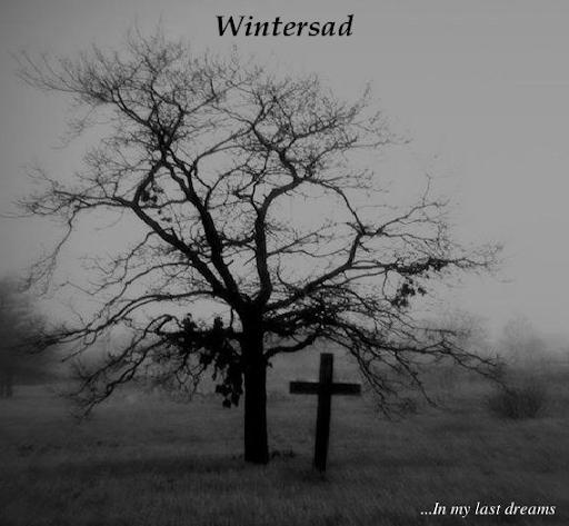Wintersad