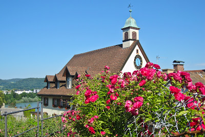 Blütenpracht in verwinkelten Altstadtgassen, dahinter das Rathaus von Laufenburg (Baden)