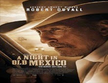 فيلم A Night in Old Mexico