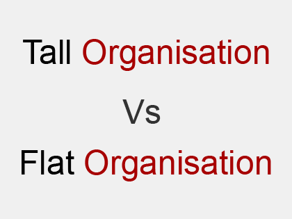 Comparison between Hierarchical and Flat Organization Structures