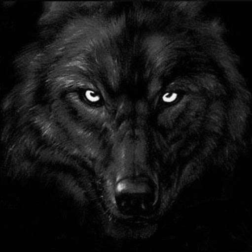 blackwolfstalker6