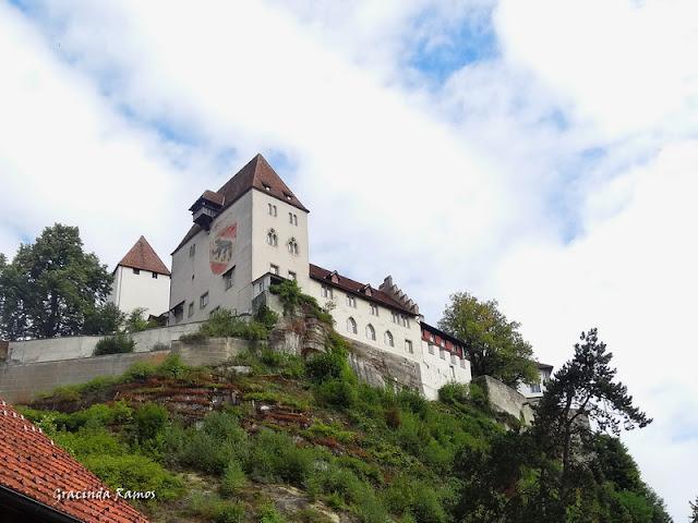 passeando - Passeando pela Suíça - 2012 - Página 14 DSC05105a