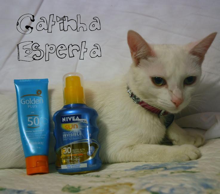 Lunna, minha gata modelo, exibindo os protetores e a marca no nariz. Agressão sofrida da Kessy.