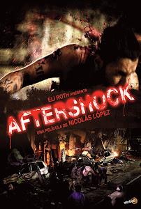 Sau Cơn Địa Chấn - Aftershock poster