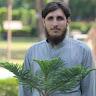 Shehzad-jamil