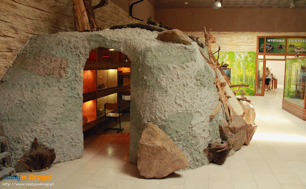 Tuchlino Park Egzotycznych Zwierzaków - Terraria ze zwierzakami