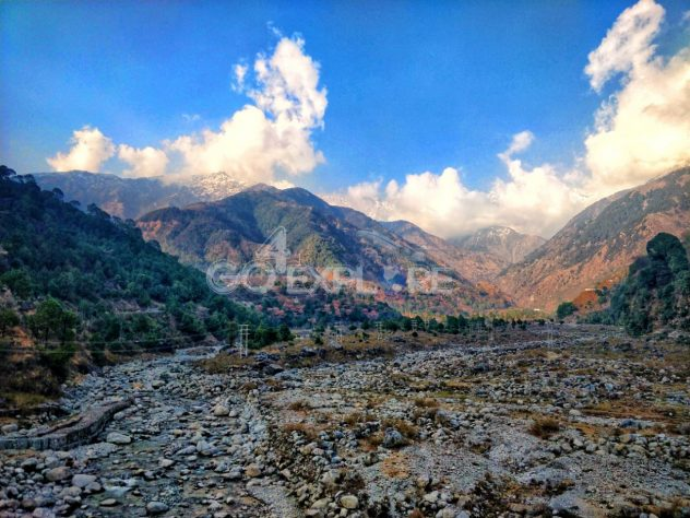 Saurav Van Vihar Palampur - Solo Travel in India