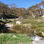 spencers creek (87817)