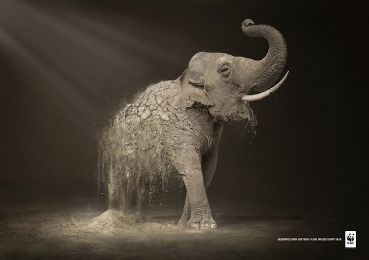 Amazing Ad Campaign By WWF: Desertification Disintegrates Animals-elephants