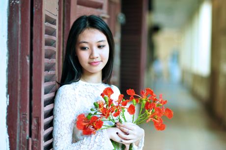 Ngắm seri ảnh Hoa Phượng Hồng nở rộ, chợt nhớ về thời đi học