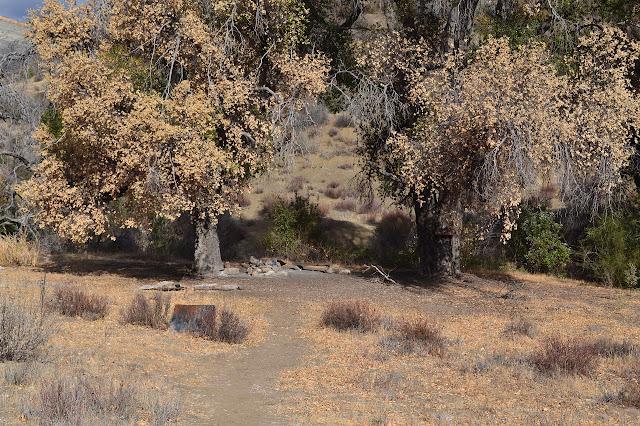 Squaw Flat Camp