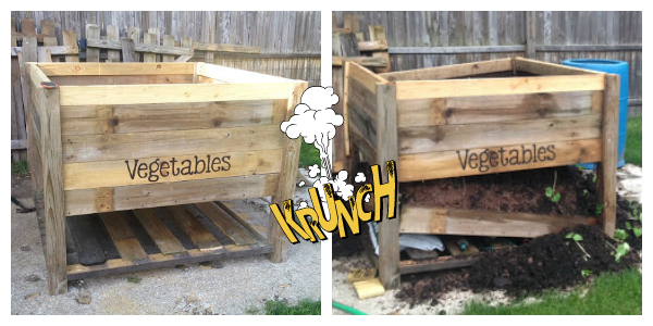 Raised Vegetable Garden Disaster