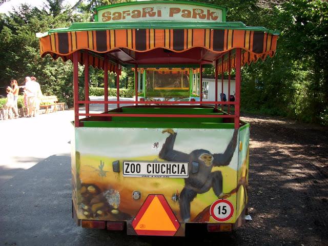 Zoo Ciuchcia czeka na pasażerów