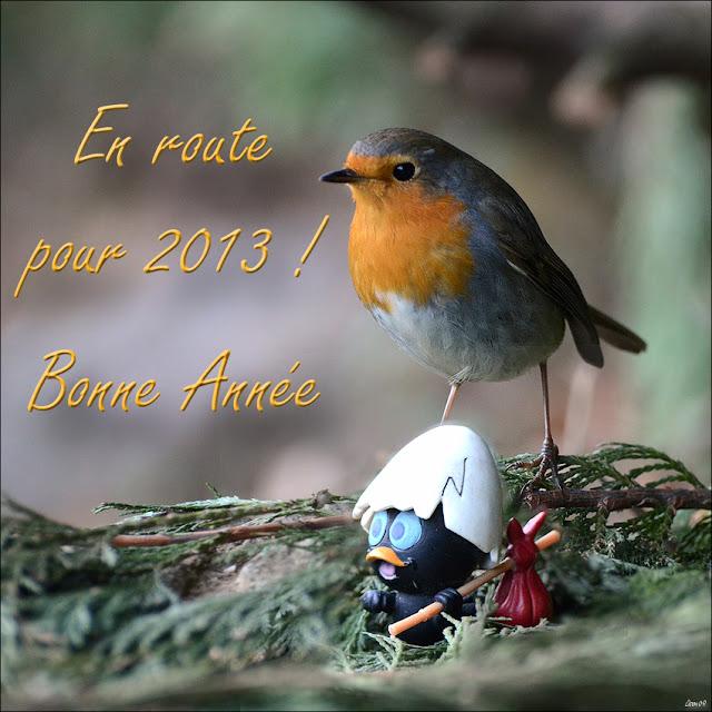 Bonne et heureuse année 2013 dans Actualité locale LMB_0951-BorderMaker%2520copie
