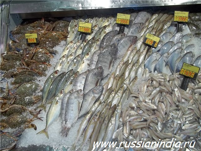 Ассортимент свежей рыбы