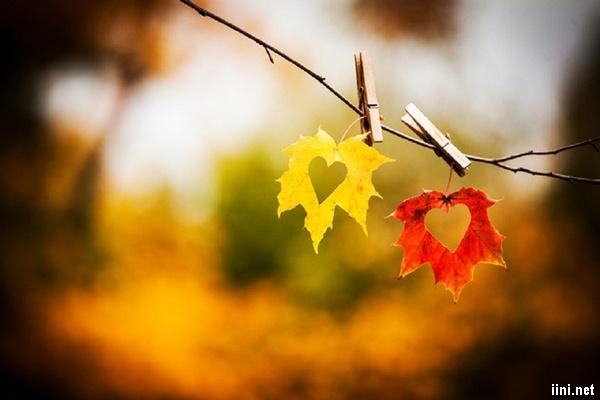thơ 8 chữ viết về Mùa Thu