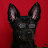W Jay J avatar image