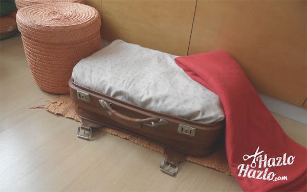 Hacer cama mascota