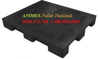 Pallet nhựa Thái Lan hàng vừa