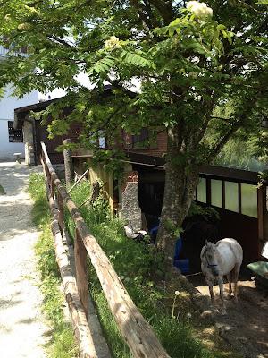 Az.Agr.Ranch Vaghezza Gilberto Di Piardi Fabio, 47 Cascina Bragasso Localita' Vaghezza, Marmentino, BS 25060, Italy