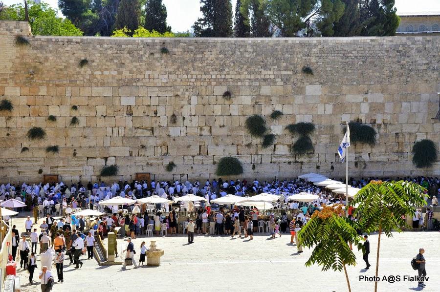 Стена Плача. Экскурсия по Иерусалиму. Гид в Израиле Светлана Фиалкова.