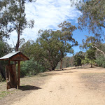 The road in Jacobs River Camping Area