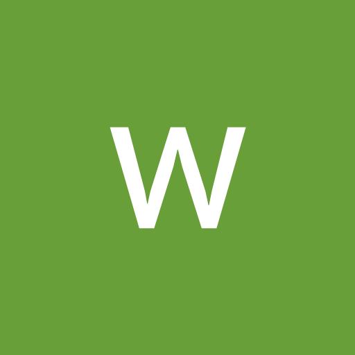 wellington marcelino da silva