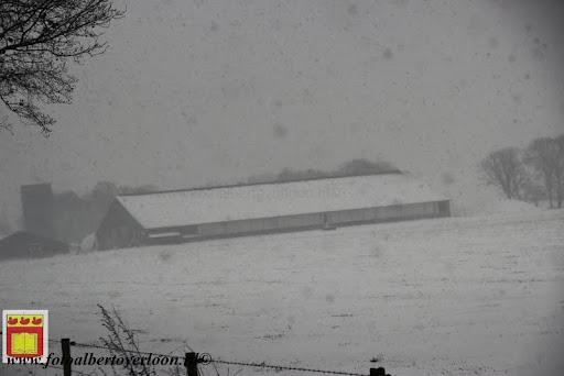 eerste sneeuwval in overloon 07-12-2012  (30).JPG