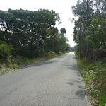 Henry Head Lane near Botany Bay National Park (310916)