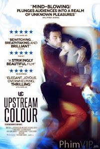 Màu Sắc Tình Yêu - Upstream Color poster