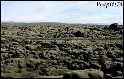 Un tour  d'Islande, au pays du feu... et des eaux. - Page 3 67-champdElrhaun