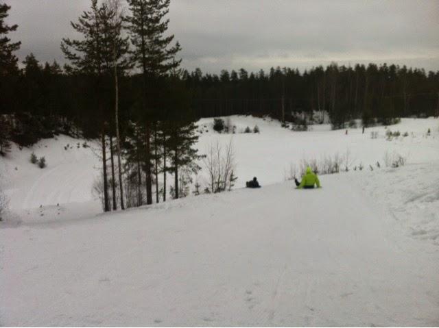 metsä, winter, snow, lumi, pulkkamäki, skiing, winter sport, outdoor,