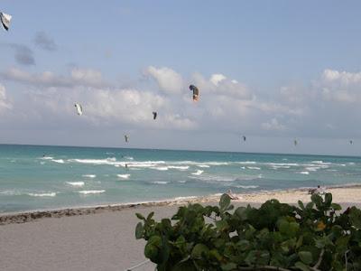 [Floride 2011 - Trip Report] WDW,DCL,USO,IOA,KSC,DC,BG,SW,ETC ... - Page 5 P5020045