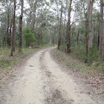 Toomeys Rd trail (228259)