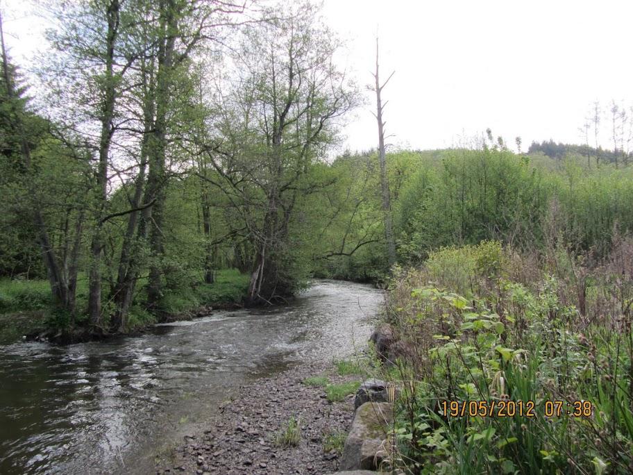 "75km, etc. ""Sentiers Ardennais"" à Masbourg (B): 18 mai 2013 IMG_0307"