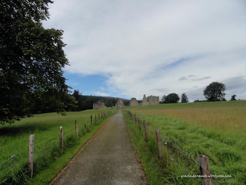 - Passeando até à Escócia! - Página 15 DSC03588