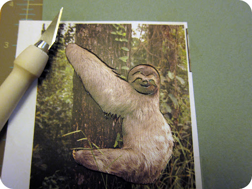 I printed a photo of a sloth from Google images, taped the image to a piece of card stock, and cut around the sloth with a craft knife.