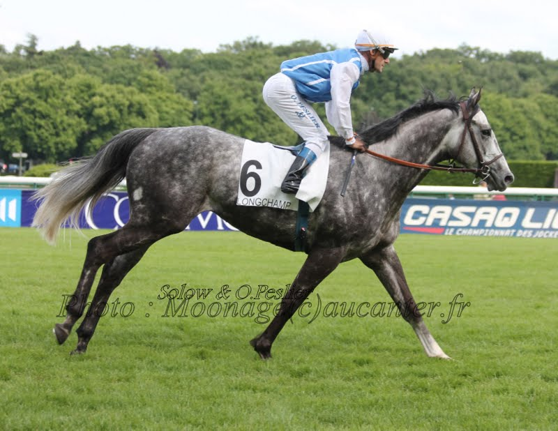 Photos Longchamp 25-05-2014 IMG_1454