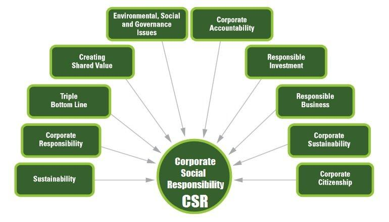 Image result for Scientific Social Responsibility
