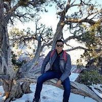 Pedro Arellano's avatar