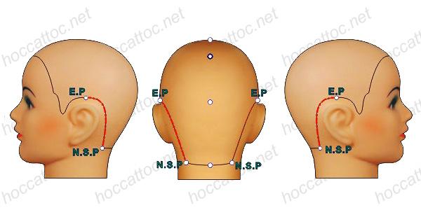 neck-side-line