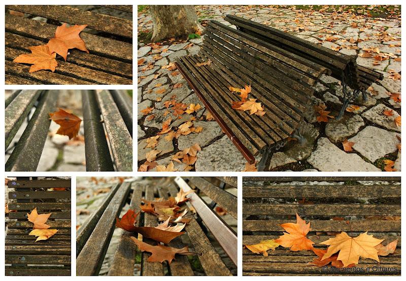 O Outono num banco de jardim
