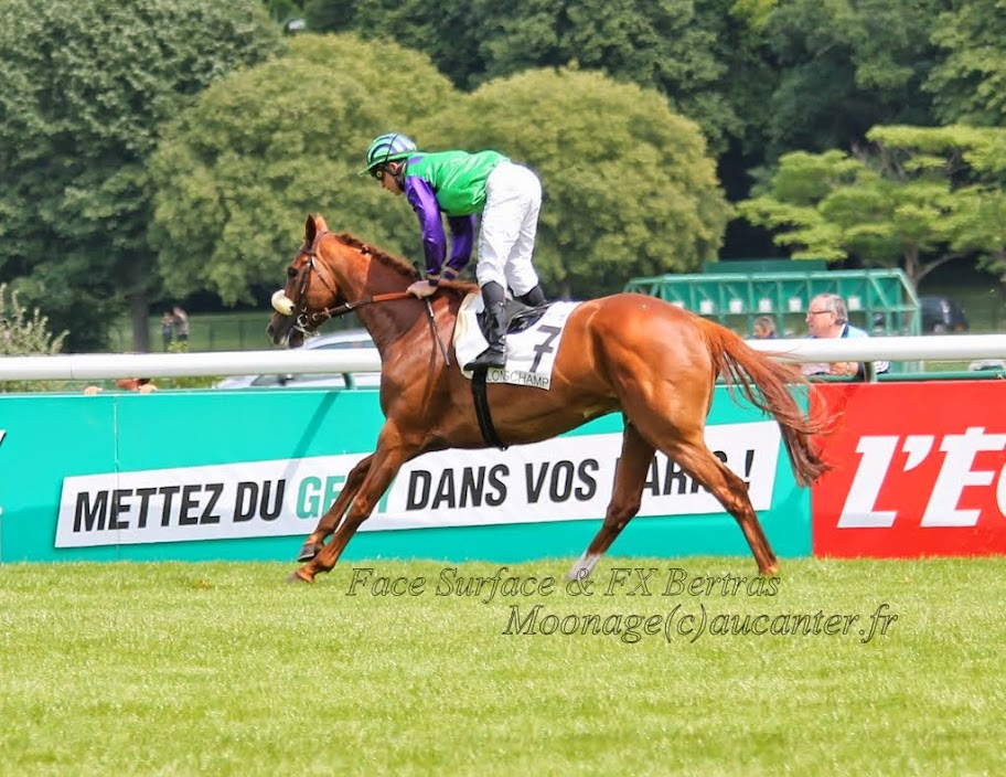 Photos Longchamp 25-05-2014 IMG_1170