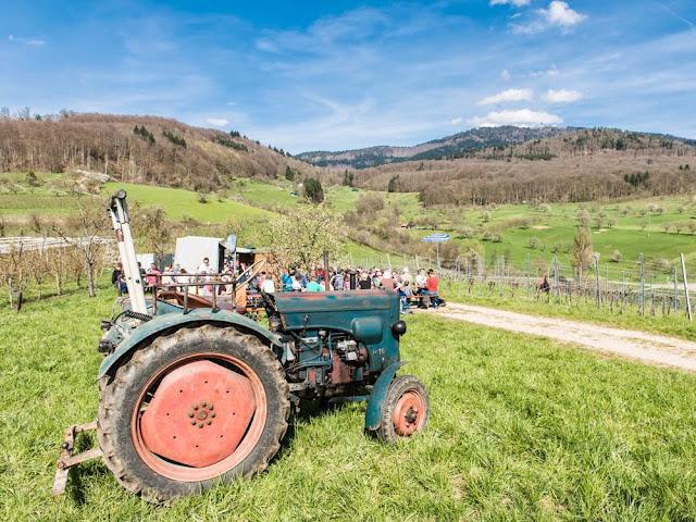 Oldie-Traktor
