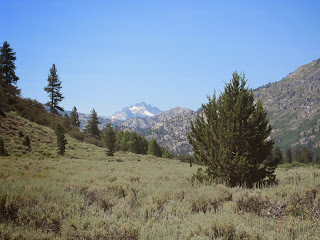 Through-Hike from Leavitt Meadows to Hetch-Hetchy