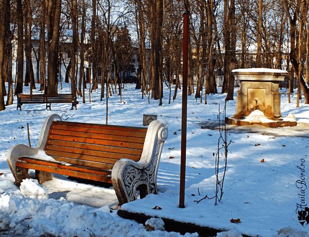 izvorul tineretului parc buzias iarna