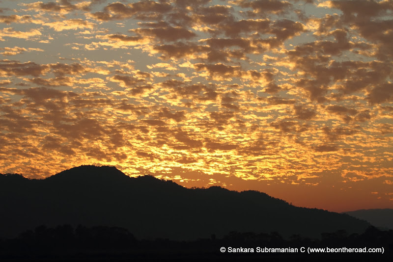 Vivid and Vibrant Evening Sky at Kaziranga - 1
